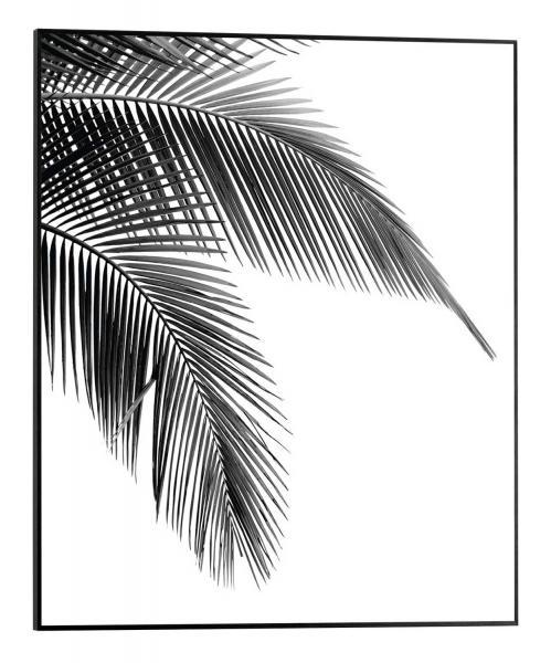 Slim-Frame SPARKY 26